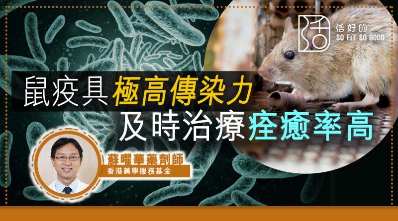 鼠疫具極高傳染力 及時治療痊癒率高