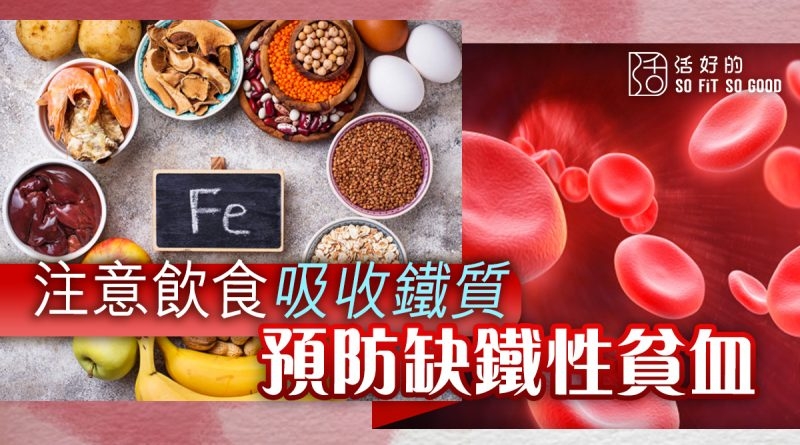 預防缺鐵性貧血