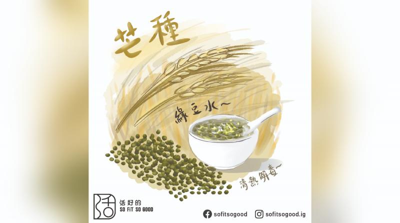 節氣 | 芒種小心苦夏找上門 綠豆水清熱解毒